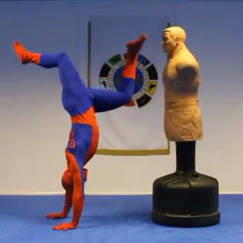 taekwondo-spiderman